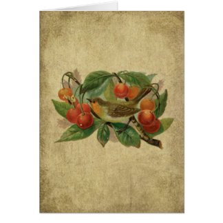 Colorful Bird & Cherries- Prim Lil Note Card