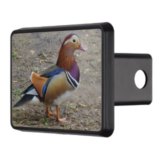 "Colorful Bird  Hitch Cover 2"" Receiver"