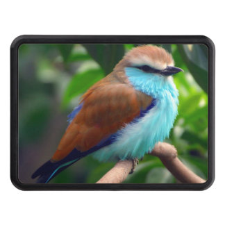 Colorful Bird Trailer Hitch Cover