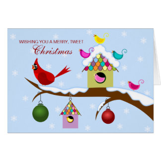 Colorful Birds Christmas Holiday Card