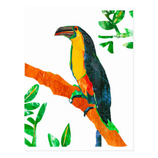 Colorful  Birds Toucan Postcard
