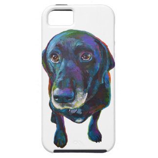 Colorful Black Labrador iPhone 5 Covers