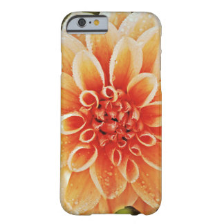 Colorful Bloom Barely There iPhone 6 Case