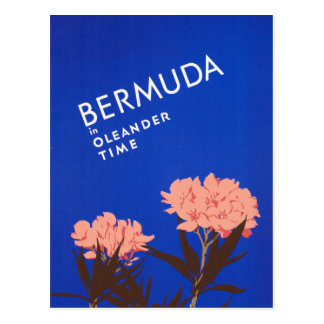 Colorful Blue Bermuda in Oleander Time Travel Postcard