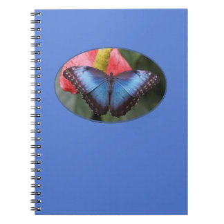 Colorful Blue Morpho Butterfly Notebook