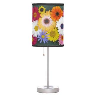 Colorful Bouquet Lamp
