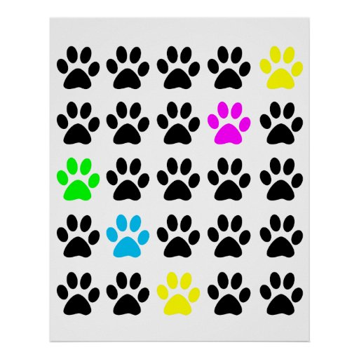 Colorful Cat Paws Poster