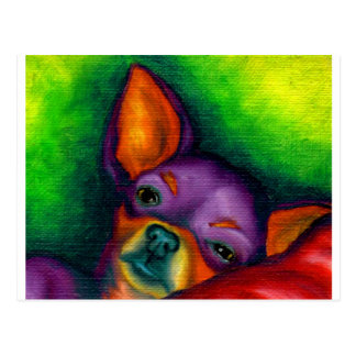 Colorful Chihuahua Postcard