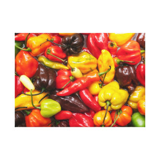 Colorful chili canvas print