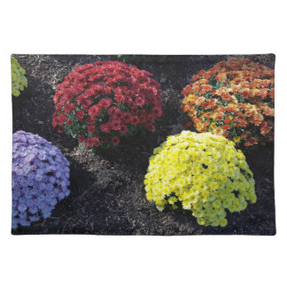 Colorful Chrysanthemums Placemat