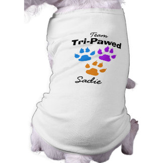 Colorful Claws and Paws Three Legged Dog Dog Clothes
