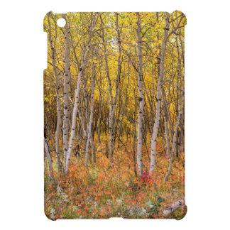 Colorful Countryside iPad Mini Case