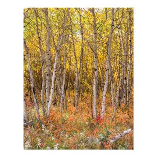 Colorful Countryside Letterhead Design