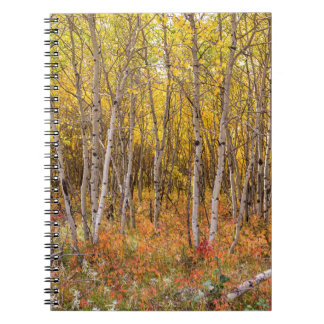 Colorful Countryside Note Book