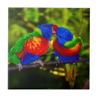 Colorful Couple of Parrots Tile