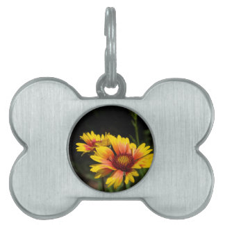 Colorful Daisys Pet Name Tag