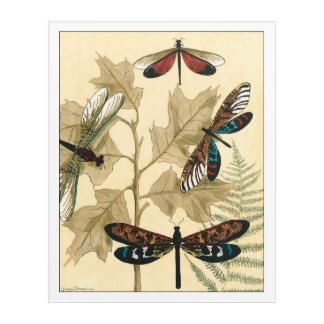 Colorful Dragonflies Floating Above Leaves Acrylic Print