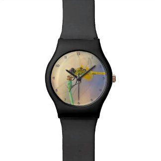 Colorful Dragonfly Watch