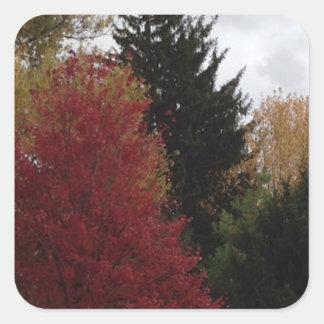 Colorful Fall Autumn Trees Custom Stickers