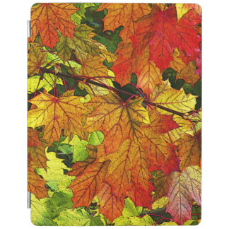 Colorful Fall Foliage iPad Cover