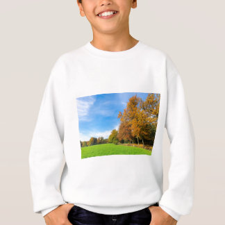 Colorful fall landscape with trees sky and meadow sweatshirt