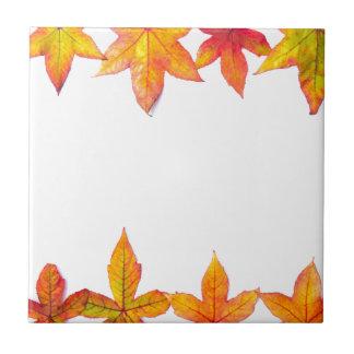 Colorful fall leaves framework on white ceramic tile