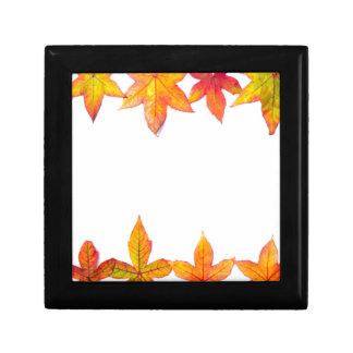 Colorful fall leaves framework on white gift box