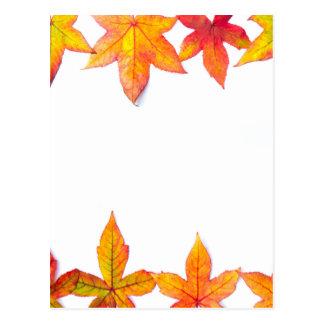 Colorful fall leaves framework on white postcard
