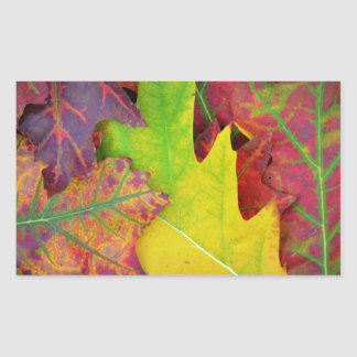 Colorful Fall Leaves Sticker