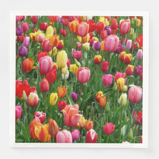 Colorful Field Of Tulips Flowers Paper Napkins