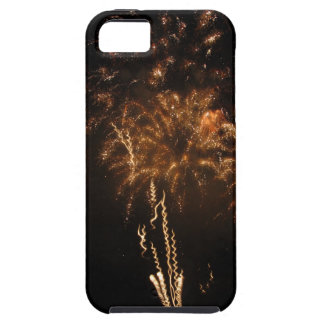 Colorful fireworks of various colors in the night iPhone 5 covers