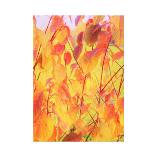 Colorful Floral Red Orange Yellow Autumn Leaves Canvas Print