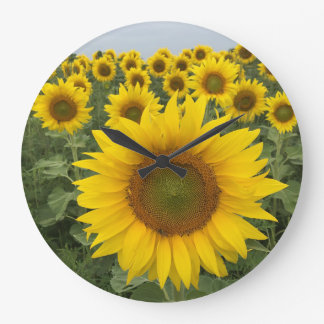 Colorful Floral Yellow Sunflowers Harvest Large Clock