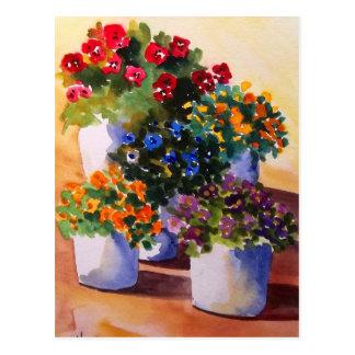 Colorful Flower Pots Postcard