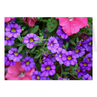 [Colorful Flowers] Calibrachoa  - Any Occasion Card