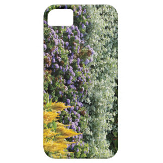 Colorful Garden Photo iPhone SE + iPhone 5/5S iPhone 5 Cases