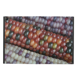 Colorful Glass Gem Corn on the Cob iPad Air Case