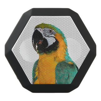 colorful gold teal macaw parrot bird portrait black bluetooth speaker
