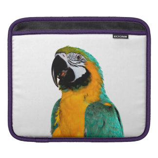 colorful gold teal macaw parrot bird portrait iPad sleeve