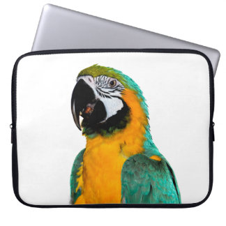 colorful gold teal macaw parrot bird portrait laptop sleeve