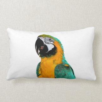 colorful gold teal macaw parrot bird portrait lumbar pillow