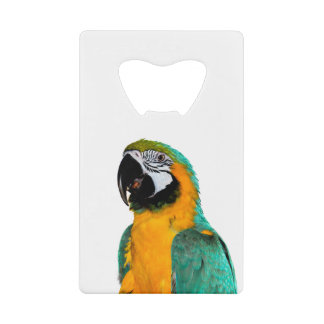colorful gold teal macaw parrot bird portrait wallet bottle opener