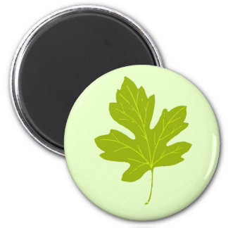 Colorful Green Autumn Leaf Magnet