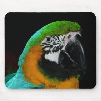 Colorful Green Parrot Mouse Pad