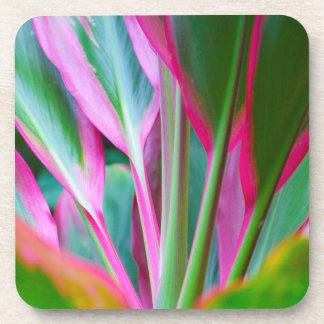 Colorful Hawaiian Plant Hard Plastic Coasters