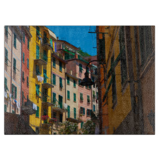 Colorful Homes in Cinque Terre Italy Boards