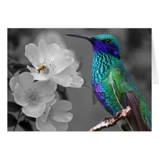 Colorful Hummingbird, Flowers and Bee Card