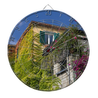 Colorful leaves on house dartboard