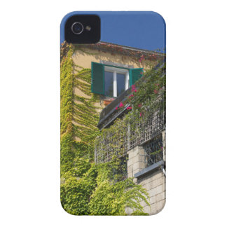 Colorful leaves on house iPhone 4 covers