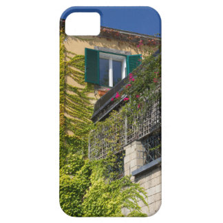 Colorful leaves on house iPhone 5 case